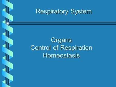 Organs Control of Respiration