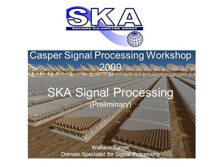 Casper Signal Processing Workshop 2009 SKA Signal Processing (Preliminary) Wallace Turner Domain Specialist for Signal Processing.