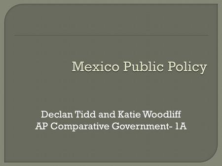 Declan Tidd and Katie Woodliff AP Comparative Government- 1A.