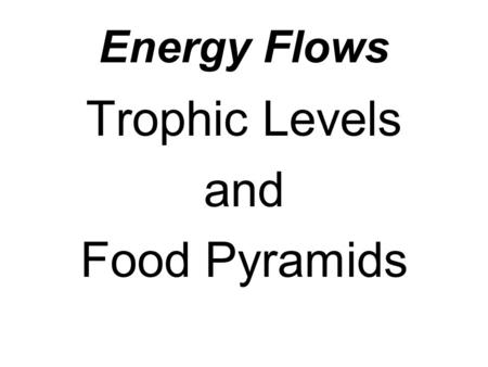 Energy Flows Trophic Levels and Food Pyramids. Autotrophs A groups of organisms that can use the energy in sunlight to convert water and carbon dioxide.