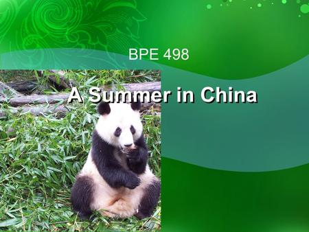 BPE 498 A Summer in China. Program  Three Courses taught by Sichuan University Faculty:  Non-Intensive Chinese Languange (4 Cr.)  Hydraulic Engineering.