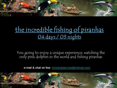 The incredible fishing of piranhas 04 days / 03 nights You going to enjoy a unique experience, watching the only pink dolphin in the world and fishing.
