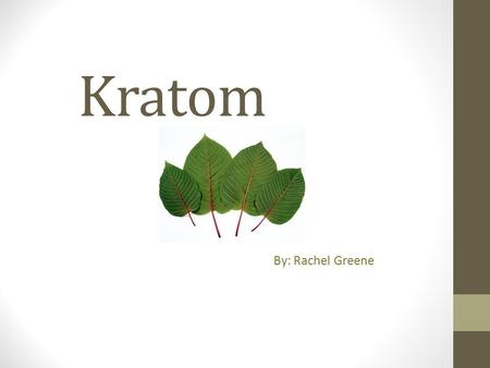 Kratom By: Rachel Greene. What is Kratom? Kratom is a tree that is native to Southeast Asia mostly commonly in Thailand. The botanical name is Mitragyna.