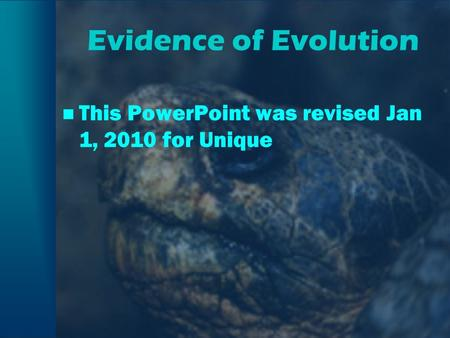 Evidence of Evolution This PowerPoint was revised Jan 1, 2010 for Unique.