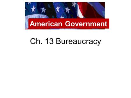 Ch. 13 Bureaucracy American Government. Bureaucracy Line at the DMV Chicago Public Schools American Government.