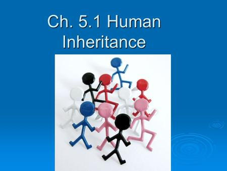 Ch. 5.1 Human Inheritance. Patterns of Human Inheritance  Some human traits are controlled by single genes with two alleles.  Others are by single genes.