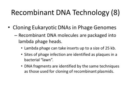 Recombinant DNA Technology (8) Cloning Eukaryotic DNAs in Phage Genomes – Recombinant DNA molecules are packaged into lambda phage heads. Lambda phage.