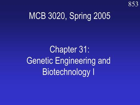 853 MCB 3020, Spring 2005 Chapter 31: Genetic Engineering and Biotechnology I.