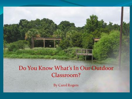 Do You Know What's In Our Outdoor Classroom? By Carol Rogers.