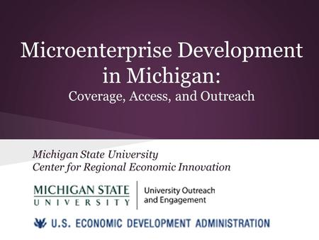 Microenterprise Development in Michigan: Coverage, Access, and Outreach Michigan State University Center for Regional Economic Innovation.