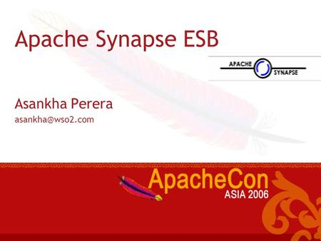 Apache Synapse The small print