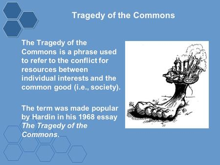 Tragedy of the Commons The Tragedy of the Commons is a phrase used to refer to the conflict for resources between individual interests and the common good.