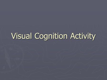 Visual Cognition Activity