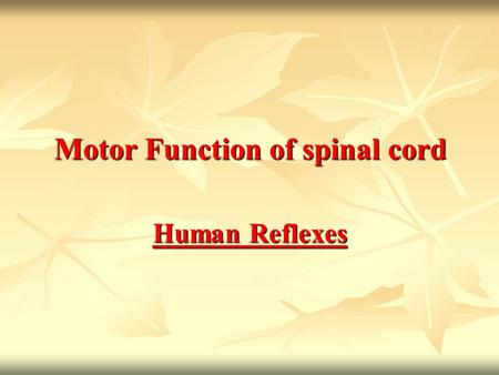Motor Function of spinal cord Human Reflexes. What is a reflex? What is a reflex? Functional unit of CNS, involuntary response to a stimulus Functional.
