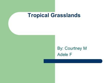 Tropical Grasslands By: Courtney M Adele F. Temperature Average annual temperature 17°C Winter temperature 15°C Summer Temperature 20°C (Living in the.