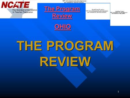 1 THE PROGRAM REVIEW The Program Review The Program Review OHIO.