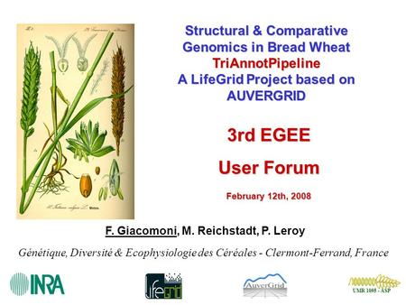 UMR 1095 - ASP UMR 1095 - ASP Structural & Comparative Genomics in Bread Wheat TriAnnotPipeline A LifeGrid Project based on AUVERGRID F. Giacomoni, M.