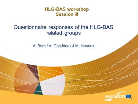 1 HLG-BAS workshop Session III Questionnaire responses of the HLG-BAS related groups A. Born / A. Götzfried / J.M. Museux.