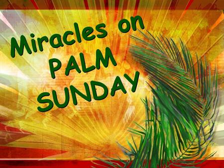 Miracles on PALM SUNDAY M i r a c l e s o n P A L M S U N D A Y.