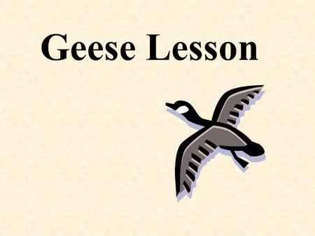 Geese Lesson. WHAT WE CAN LEARN FROM GEESE Fact No. 1 As each bird flaps its wings, it creates an uplift draft for the bird following. By flying in a.