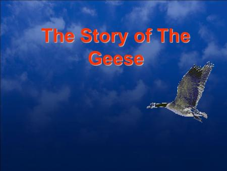 "The Story of The Geese. This Fall When you see geese heading south For the winter flying along in ""V"" formation You might consider what science has discover."