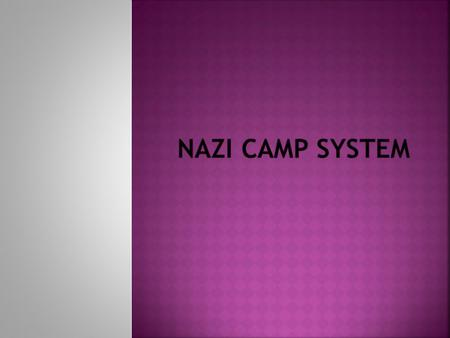  The Nazis Used the colored triangle system to identify each prisoners background  Jews were the main target in the holocaust  Gypsies, homosexuals,