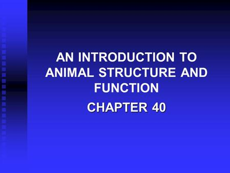 AN INTRODUCTION TO ANIMAL STRUCTURE AND FUNCTION CHAPTER 40.