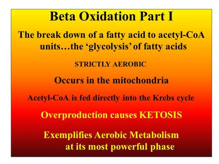 Beta Oxidation Part I The break down of a fatty acid to acetyl-CoA units…the 'glycolysis' of fatty acids Occurs in the mitochondria Exemplifies Aerobic.