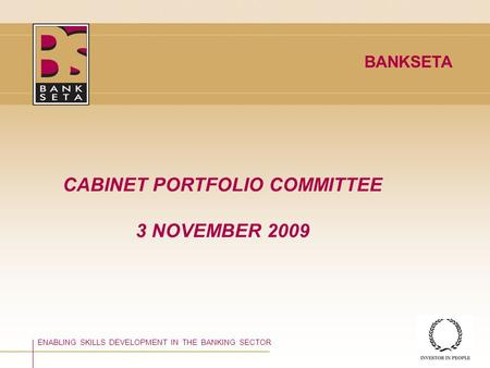 ©BANKSETA 2008 CABINET PORTFOLIO COMMITTEE 3 NOVEMBER 2009 ENABLING SKILLS DEVELOPMENT IN THE BANKING SECTOR BANKSETA.