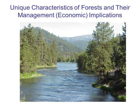 Unique Characteristics of Forests and Their Management (Economic) Implications.