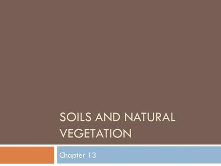 SOILS AND NATURAL VEGETATION Chapter 13. The Soil Base - MOMA  Mineral  Come from rocks  Become part of the soil when the rock is broken down by weathering.