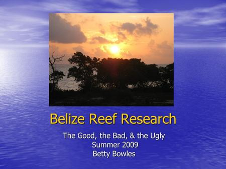 Belize Reef Research The Good, the Bad, & the Ugly Summer 2009 Summer 2009 Betty Bowles.