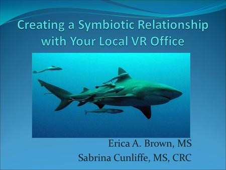 Erica A. Brown, MS Sabrina Cunliffe, MS, CRC. Session Overview Becoming a VR vendor for Job Placement Services Ensuring a person receives quality Career.