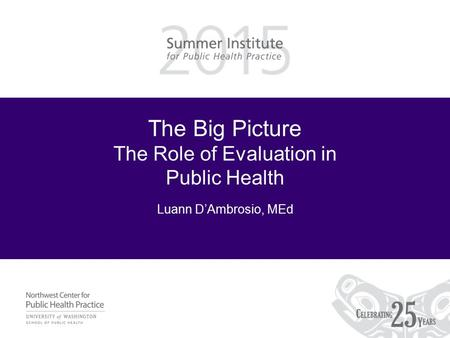 The Big Picture The Role of Evaluation in Public Health Luann D'Ambrosio, MEd.