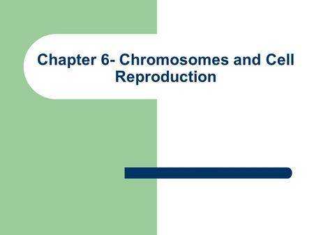 Chapter 6- Chromosomes and Cell Reproduction. I. Chromosomes.