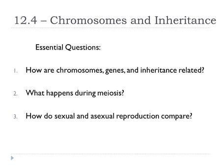 12.4 – Chromosomes and Inheritance Essential Questions: 1. How are chromosomes, genes, and inheritance related? 2. What happens during meiosis? 3. How.