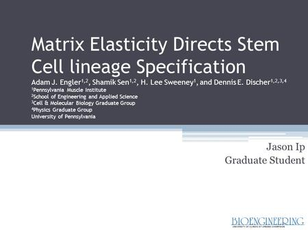 Matrix Elasticity Directs Stem Cell lineage Specification Adam J. Engler 1,2, Shamik Sen 1,2, H. Lee Sweeney 1, and Dennis E. Discher 1,2,3,4 1 Pennsylvania.