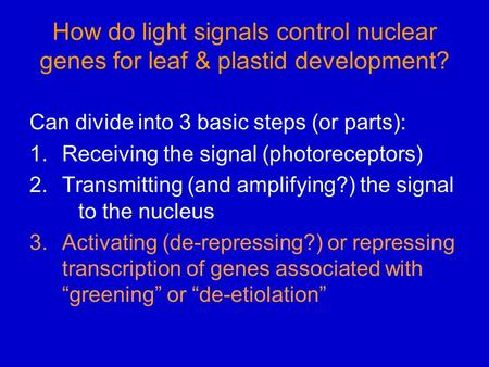 How do light signals control nuclear genes for leaf & plastid development? Can divide into 3 basic steps (or parts): 1.Receiving the signal (photoreceptors)