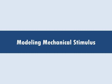 Modeling Mechanical Stimulus. Intro Activity -(Outline Activity Once Determined) -(Questions, etc.)