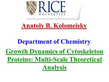Anatoly B. Kolomeisky Department of Chemistry Growth Dynamics of Cytoskeleton Proteins: Multi-Scale Theoretical Analysis.