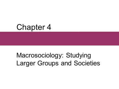 Chapter 4 Macrosociology: Studying Larger Groups and Societies.