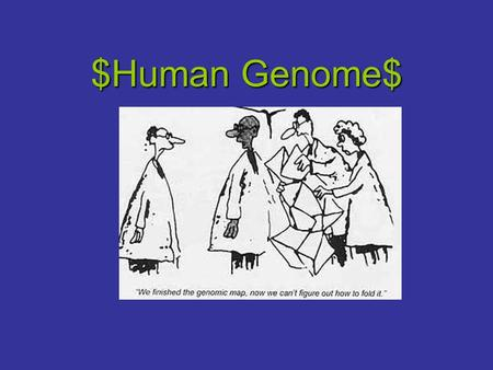 $Human Genome$. Human Genome Project & Goals It is an international effort to completely map and sequence the human genome, their are approximately 80,000.