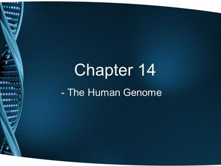 Chapter 14 - The Human Genome.