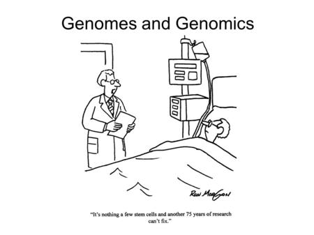 Genomes and Genomics. Learning Objectives By the end of this class you should understand: The information that may result from sequencing a genome The.