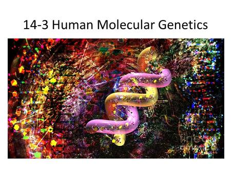 14-3 Human Molecular Genetics. Testing for Alleles Genetic tests are now available for hundreds of disorders o Tay-Sachs o Cystic Fibrosis o Sickle Cell.
