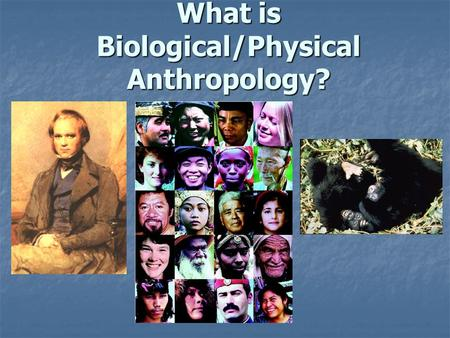 What is Biological/Physical Anthropology? What is Anthropology? Scientific study of the origin, behavior, physical variation, and cultural development.