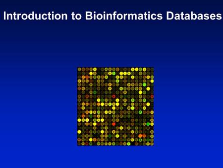 Introduction to Bioinformatics Databases. DNARNAphenotypeprotein Central dogma of molecular biology A main focus of bioinformatics is to study molecular.