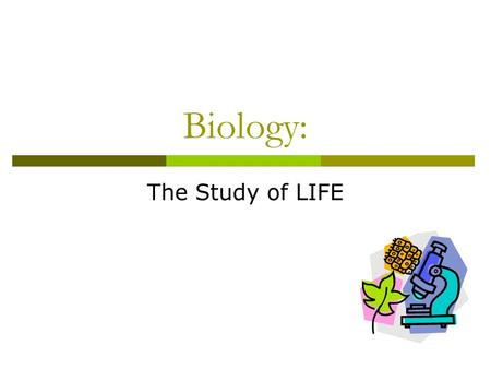 Biology: The Study of LIFE. What do these have in common? They are biology!!! Biology is the study of life!
