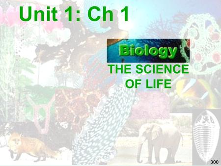 THE SCIENCE OF LIFE Unit 1: Ch 1 300. WHAT IS BIOLOGY??? (living & once living things)