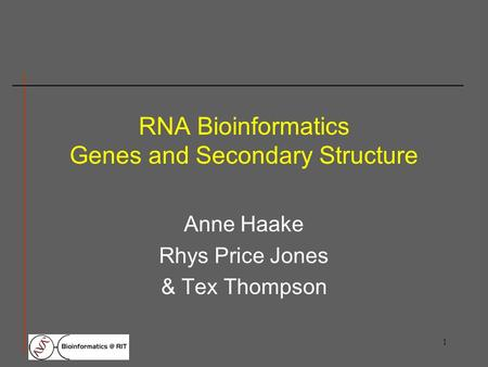 1 RNA Bioinformatics Genes and Secondary Structure Anne Haake Rhys Price Jones & Tex Thompson.